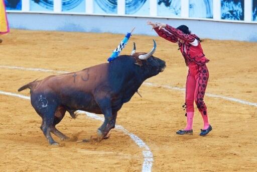 Kad je muškarac povrijeđen - bik